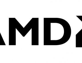 Ducks AMD Gamer Award